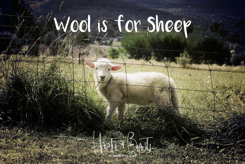 Wool is for Sheep